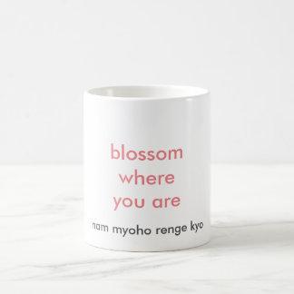 blossom where you are Mug