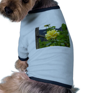 Blossom yellow rose on a mountain background doggie tshirt