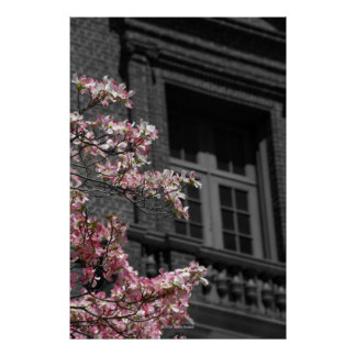 Blossoming Balcony Poster