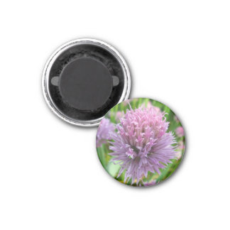 Blossoming Chives Magnet