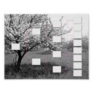 Blossoming Family Tree: 4 Generation Wall Chart