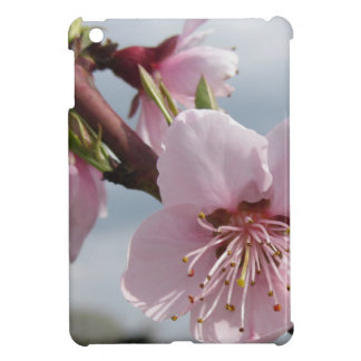 Blossoming peach tree against the cloudy sky iPad mini cover
