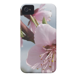 Blossoming peach tree against the cloudy sky iPhone 4 Case-Mate case