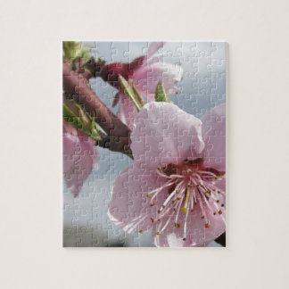 Blossoming peach tree against the cloudy sky jigsaw puzzle