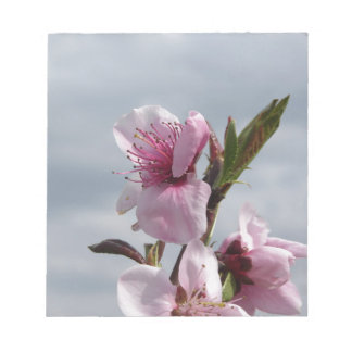 Blossoming peach tree against the cloudy sky notepad