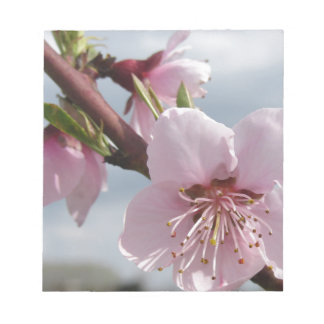 Blossoming peach tree against the cloudy sky notepads