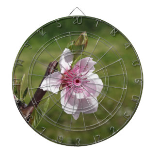 Blossoming peach tree against the green garden dartboard