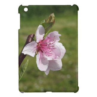 Blossoming peach tree against the green garden iPad mini cover