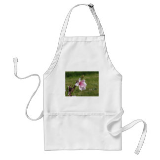 Blossoming peach tree against the green garden standard apron