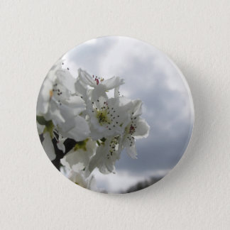 Blossoming pear tree against the cloudy sky 2 inch round button