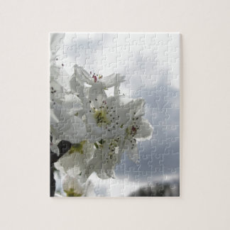 Blossoming pear tree against the cloudy sky jigsaw puzzle