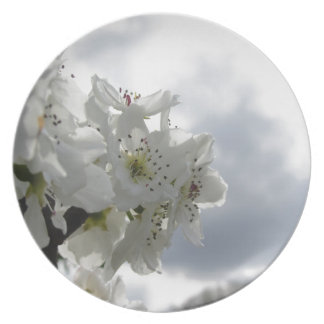 Blossoming pear tree against the cloudy sky plate