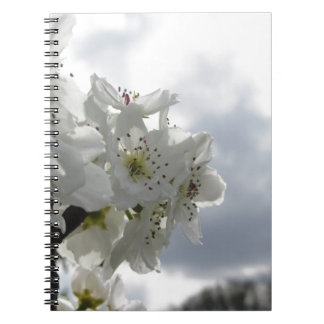 Blossoming pear tree against the cloudy sky spiral notebook