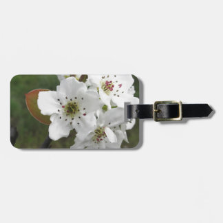 Blossoming pear tree against the green garden luggage tag