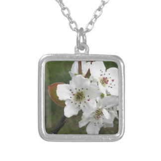 Blossoming pear tree against the green garden silver plated necklace