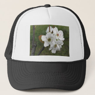 Blossoming pear tree against the green garden trucker hat