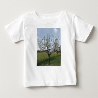Blossoming pear tree in the garden  Tuscany, Italy Baby T-Shirt