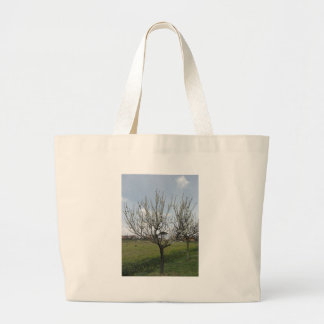 Blossoming pear tree in the garden  Tuscany, Italy Large Tote Bag