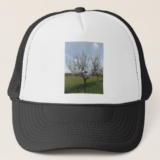 Blossoming pear tree in the garden  Tuscany, Italy Trucker Hat