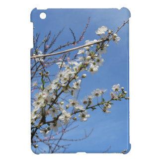 Blossoming plum against the sky . Tuscany, Italy iPad Mini Cases