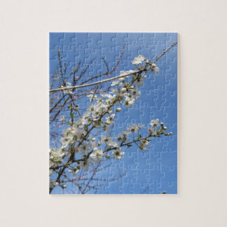 Blossoming plum against the sky . Tuscany, Italy Jigsaw Puzzle