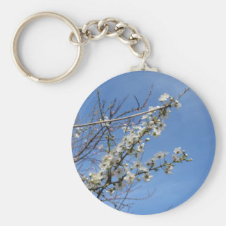 Blossoming plum against the sky . Tuscany, Italy Keychain
