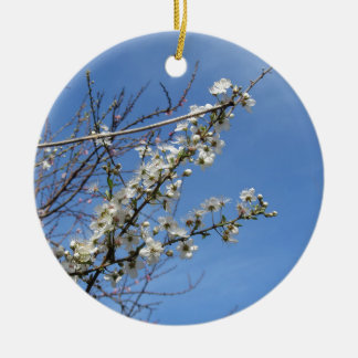 Blossoming plum against the sky . Tuscany, Italy Round Ceramic Ornament