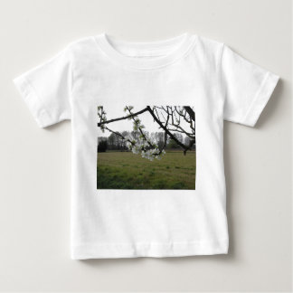 Blossoming plum . Flowering white tree in spring Baby T-Shirt