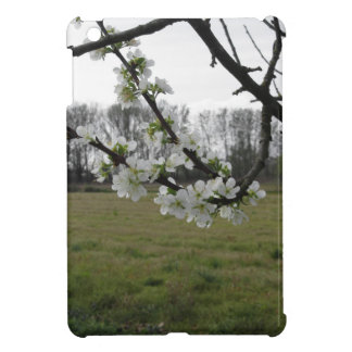 Blossoming plum . Flowering white tree in spring Case For The iPad Mini