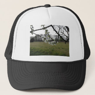 Blossoming plum . Flowering white tree in spring Trucker Hat