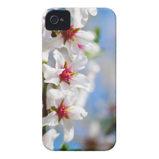 Blossoming tree branch with white flowers iPhone 4 case