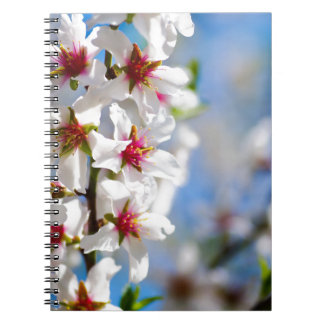 Blossoming tree branch with white flowers notebooks