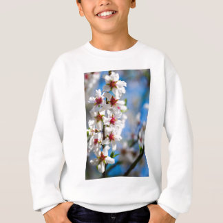 Blossoming tree branch with white flowers sweatshirt