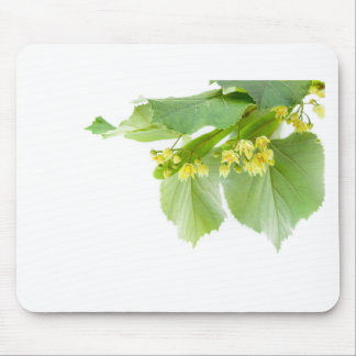 Blossoming twig of limetree or linden tree mouse pad