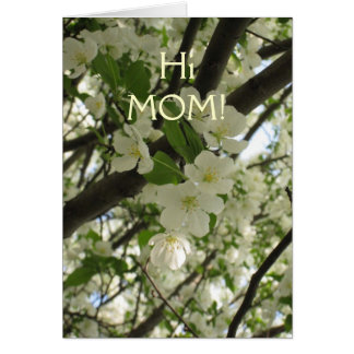 blossoms7, HiMOM! Card