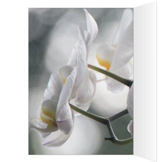 Blossoms Flowers Orchids Peace Love Destiny Card