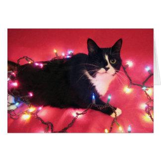 Blossom's Happy Holidays card