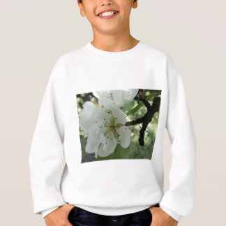 Blossoms of a pear tree in spring . Tuscany, Italy Sweatshirt