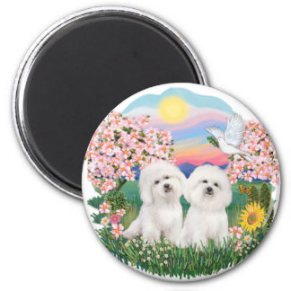 Blossoms - Two Bichon Frise 2 Inch Round Magnet