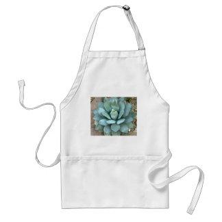 Blue Agave Plant Standard Apron