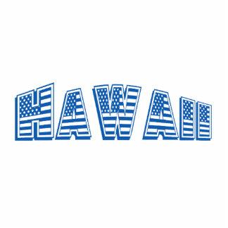 Blue American Flag Hawaii Standing Photo Sculpture
