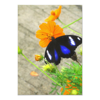 Blue and Black Butterfly Invitation Card