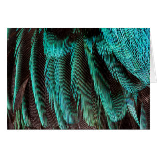 Blue And Black Feather Design Card