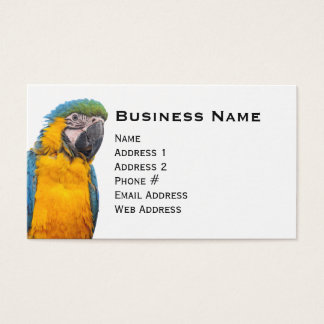 Blue and Gold Macaw Business Card