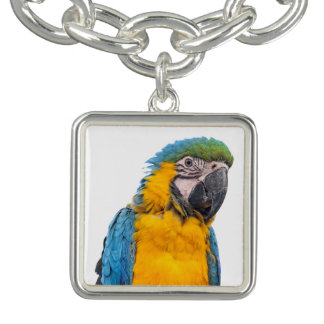 Blue and Gold Macaw Charm Bracelets