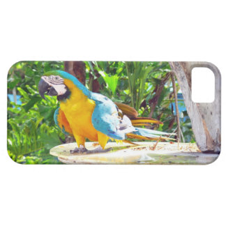 Blue and Gold Macaw Parrot iPhone 5 Cover