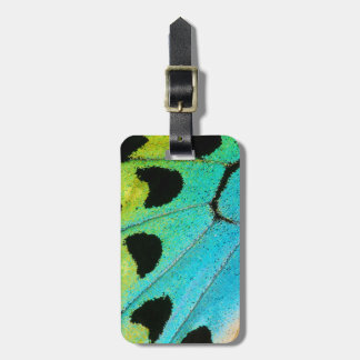 blue and green butterfly wing luggage tag