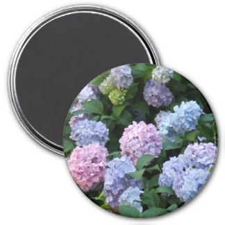 Blue and Purple Hydrangea Magnet