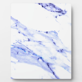 Blue and white marble plaque