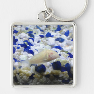 Blue and white pebbles and Albino cat fish Silver-Colored Square Keychain